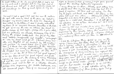 Gary Fisher (1961-1994) was a gay African American man who enjoyed writing and drawing and was a dedicated diarist who died of AIDS at the age of 32 in San Francisco. This page, dated February 7, 1991, is from one of his journals and it illustrates the fear, uncertainty and hope that surrounded the use of new medications to treat HIV and AIDS. (Gary Fisher Papers, San Francisco Public Library)
