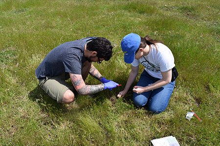 Citizen scientists collect eDNA from reserve.