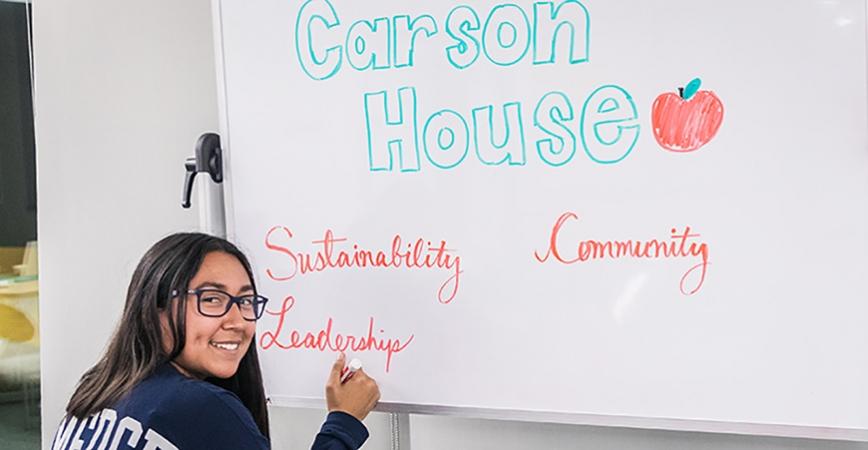 Carson House Hangout