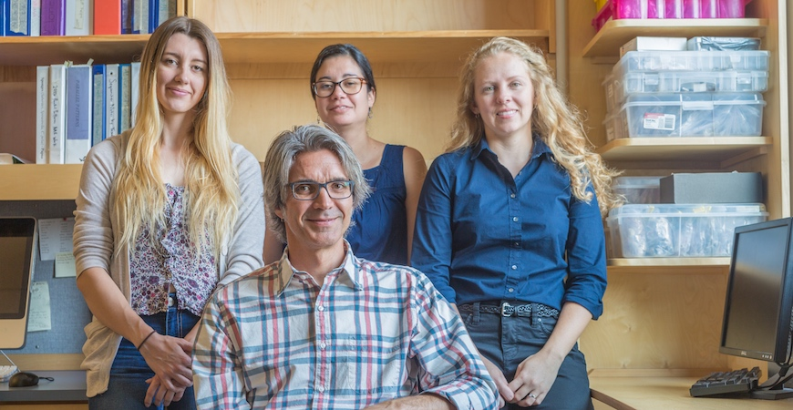 Professor Michael Dawson (seated) with graduate student Karly Higgins (left) and postdoctoral researchers Dannise Ruiz-Ramos (center) and Lauren Schiebelhut.