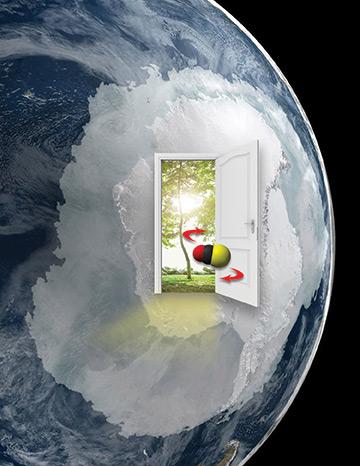 Global Photosynthesis