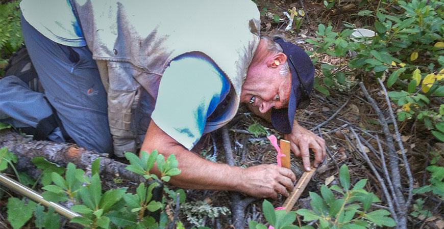 UC Merced Professor Stephen Hart studies soil depth