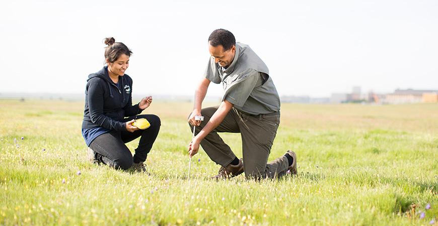 Two researchers kneeling in a green, grassy field.