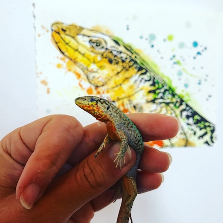 A left hand holding a small lizard in front of a larger drawing of the lizard.