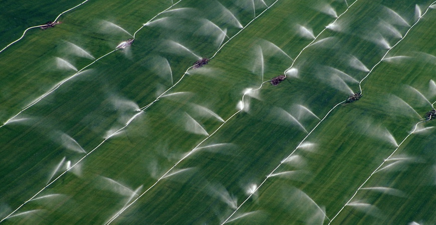 Aerial photograph of green farmland being watered by dozens of sprinklers.