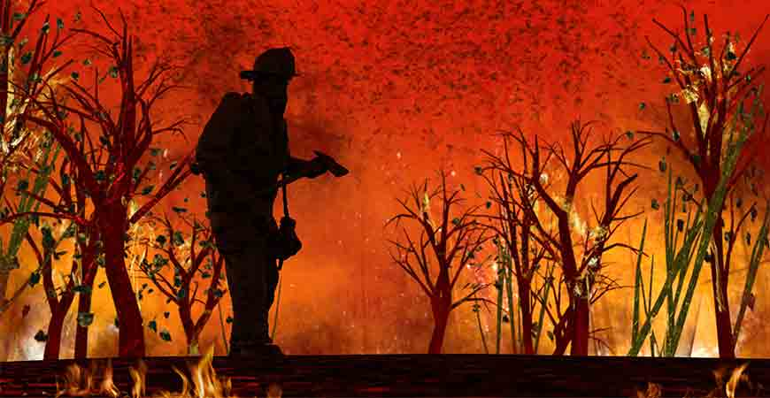 Wildfire management hero