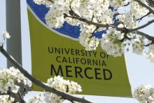 UC Merced flag